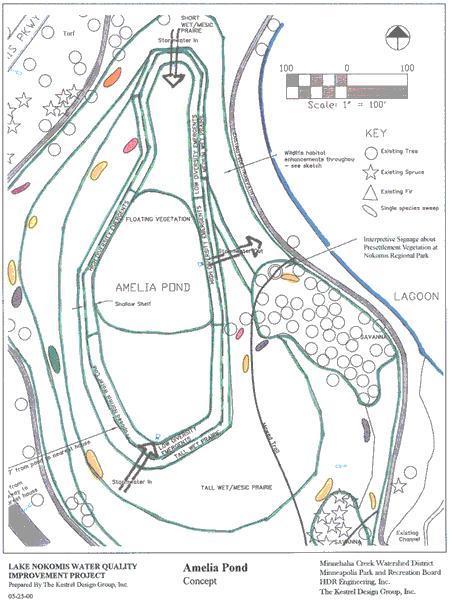Amelia Pond concept plan