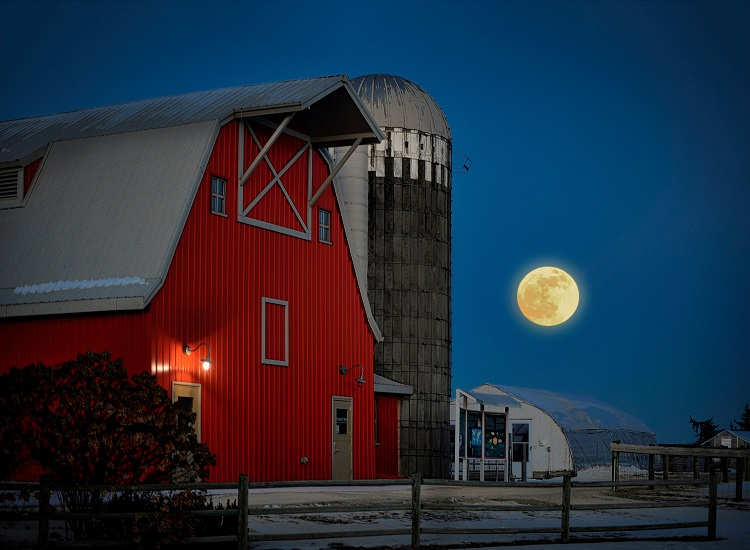 Moon over Gale Woods Farm barn