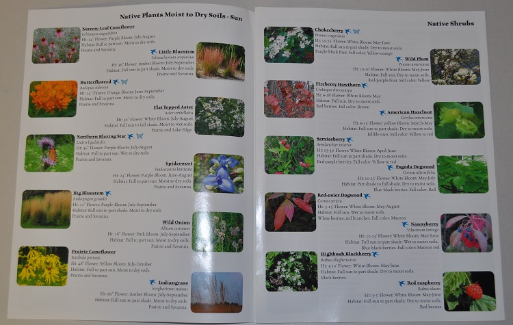 native plant fact sheet inside
