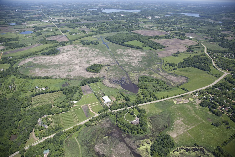 Aerial of Painter Marsh