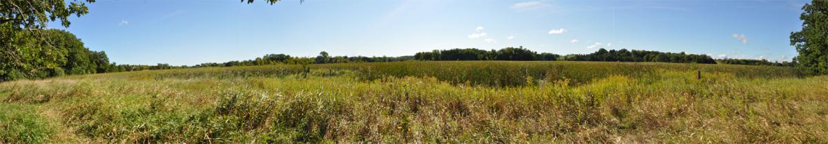 Photo of Six Mile Creek Prairie