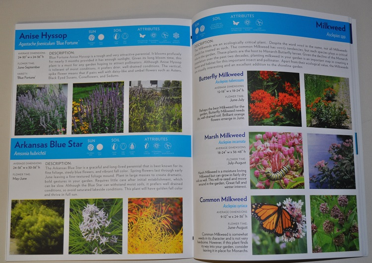 shoreline gardens guide inside