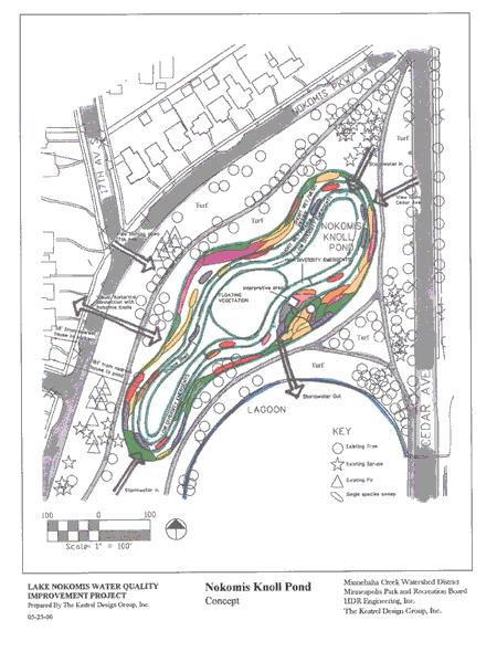 Nokomis Knoll Pond Concept Plan