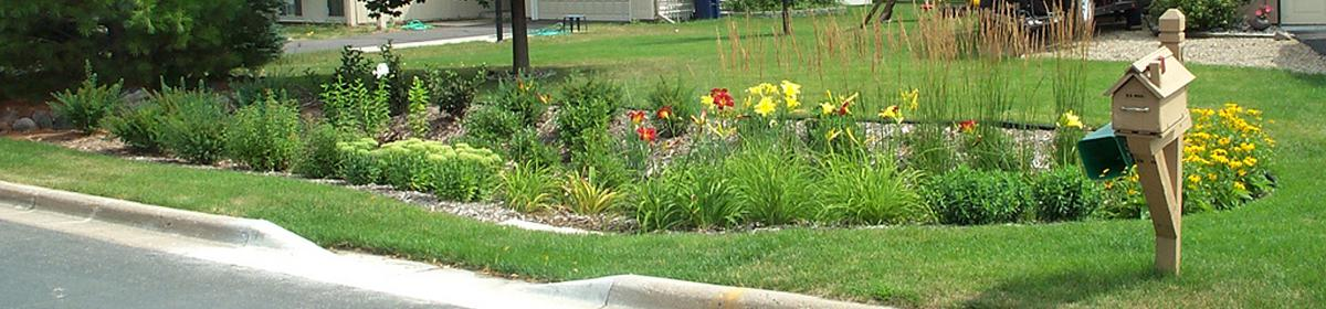 A rain garden with a cut curb to collect stormwater from the street.