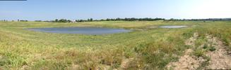 Panorama of Six Mile Marsh Prairie