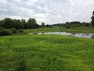 Six Mile Marsh