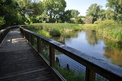Minnehaha Creek from Preserve boardwalk