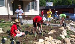 Group planting a garden